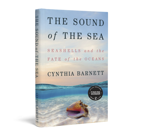The Sound of the Sea book image