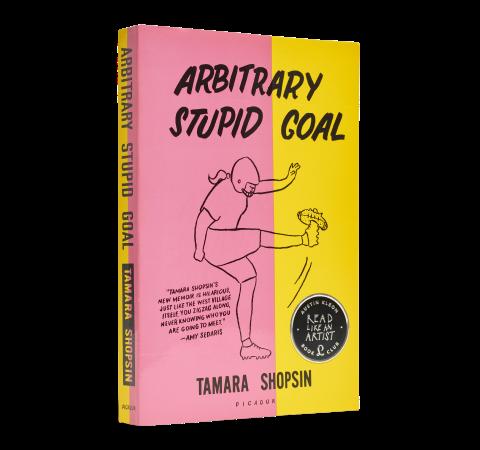 Arbitrary Stupid Goal book image