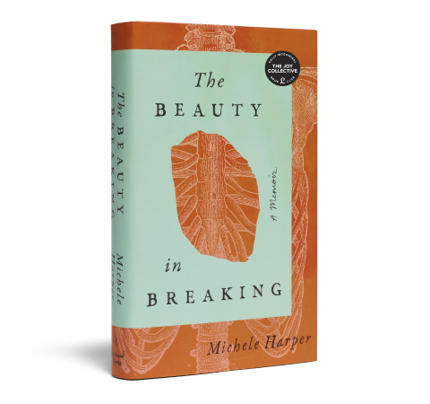 The Beauty in Breaking book image