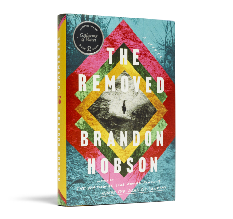 The Removed book image